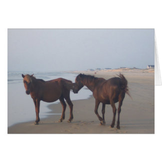 Carovaのビーチの野生の馬 グリーティングカード