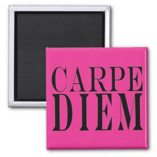 Carpe Diemは日のラテン系の引用文の幸福を握ります マグネット