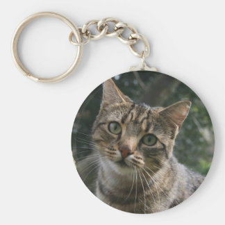 CAT キーホルダー
