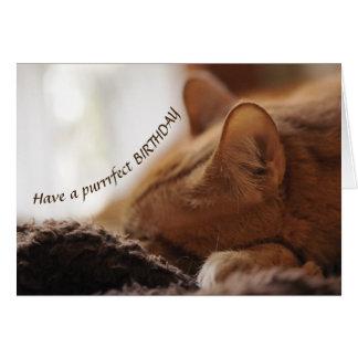 Cat Bday card カード