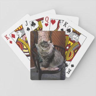 Cat Kimber王のトランプ トランプ