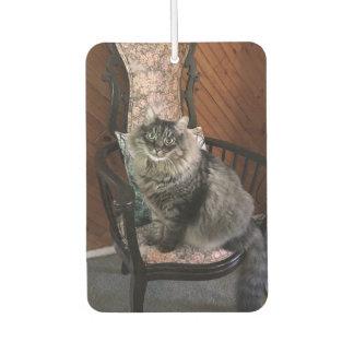 Cat Kimber Car王の芳香剤 カーエアーフレッシュナー
