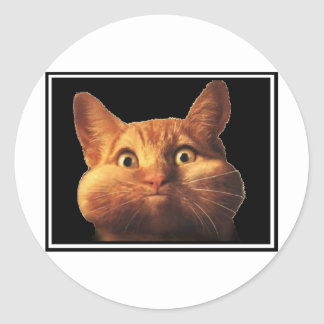 CAT OOPS ラウンドシール