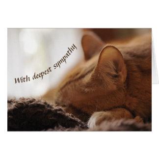 Cat sympathy カード