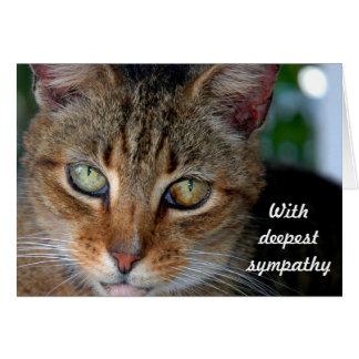 Cat sympathy 2 カード