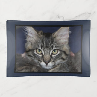 Cat with Attitude Kimber Trinket Tray トリンケットトレー