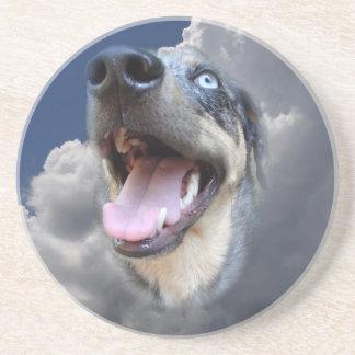 Catahoulaのヒョウ犬の柔らかい雲のクローズアップ コースター