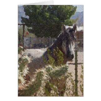Catcusの灰色の馬 カード