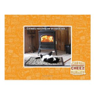 Catnutsの焙焼 ポストカード