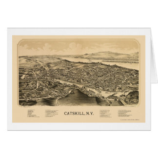 CatskillのNYのパノラマ式の地図- 1889年 カード