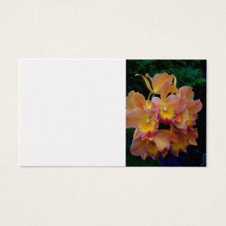 Cattleyaの蘭 名刺