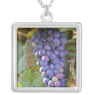 Chambertinのピノー(赤)ワインのブドウの束 シルバープレートネックレス