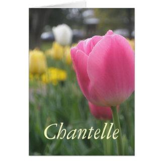 Chantelle カード