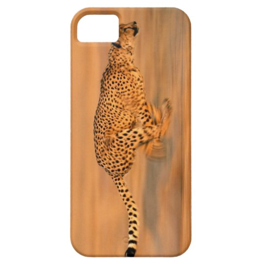 Cheetah 4 iPhone SE/5/5s ケース