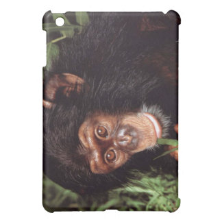 Chimpanseeの場合 iPad Mini カバー