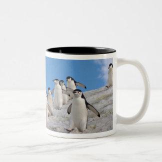 chinstrapのペンギン、Pygoscelis南極大陸、 ツートーンマグカップ