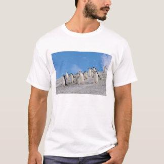 chinstrapのペンギン、Pygoscelis南極大陸、 Tシャツ