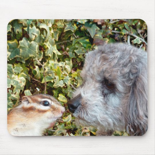 chipmunk and dog (poodle) マウスパッド