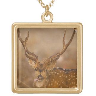 ChitalかCheetalの斑点を付けられたシカ、男性に牧草を食べること ゴールドプレートネックレス
