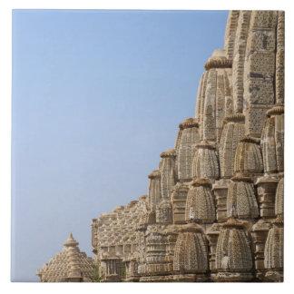 Chittorgarhの城砦、インドのジャイナ教の寺院 タイル
