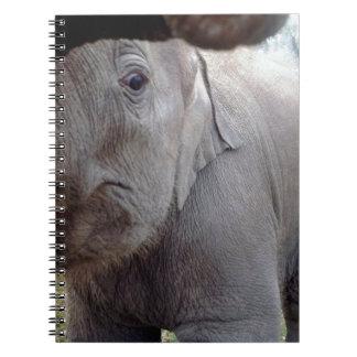 Chitwan、ネパールの赤ん坊のアジアゾウ ノートブック