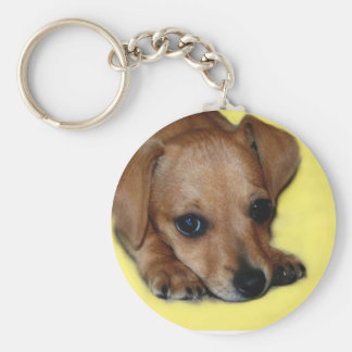 Chiweenieの子犬Keychain キーホルダー