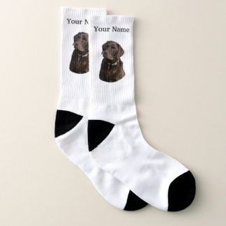 Chocolate labrador dog ソックス