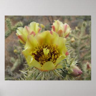 Chollaのサボテンの花 ポスター