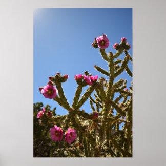 Chollaの咲くサボテンによってはポスターが開花します ポスター