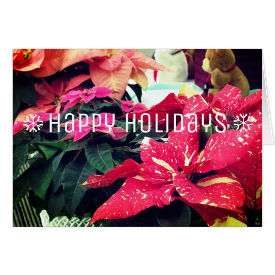 Christmas card:Poinsettia カード