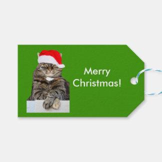 Christmas Cat Photo in Santa Hat Gift Tag ギフトタグ