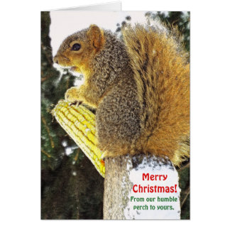 Christmas humor/Squirrel On Log With Corn Cob カード