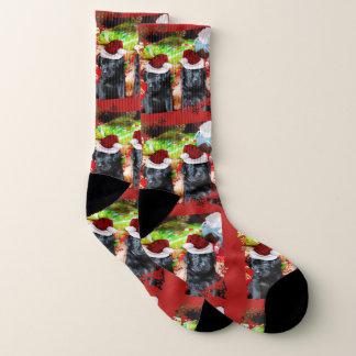 Christmas Labrador Retrievers  dog socks ソックス