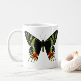 Chrysiridia rhipheus、ニシキオオツバメガ コーヒーマグカップ