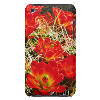 Claretコップのサボテンの野生の花 Case-Mate iPod Touch ケース