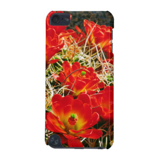 Claretコップのサボテンの野生の花 iPod Touch 5G ケース