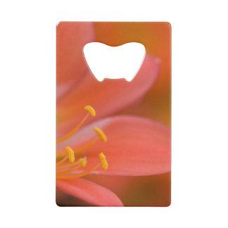 Cliviaのかわいらしく赤い花 クレジットカード ボトルオープナー