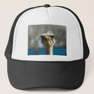 Close_Up_Ostrich_FullSize.jpg キャップ