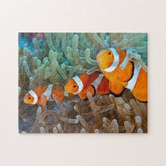 Clownfish ジグソーパズル