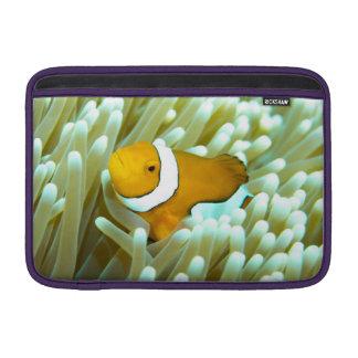 Clownfish Macbookの空気袖 MacBook スリーブ