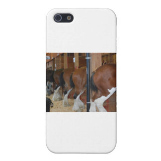 Clydesdaleの馬 iPhone 5 Cover
