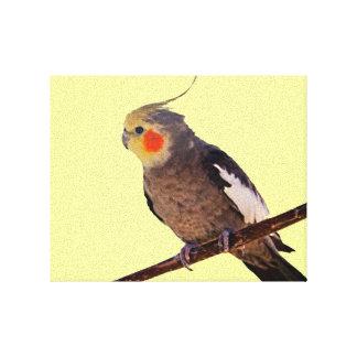 Cockatielの灰色および黄色ペット鳥の写真 キャンバスプリント