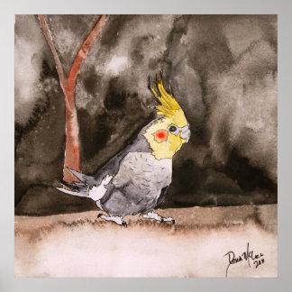 cockatielの鳥の絵画の芸術のプリント ポスター