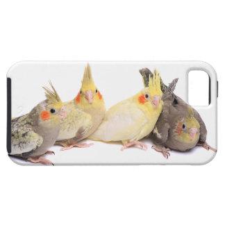Cockatiels iPhone 5 Case-Mate ケース