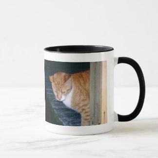 Cody猫のマグ マグカップ