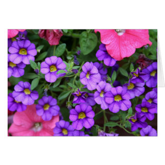 [Colorful Flowers] Calibrachoa  - Any Occasion カード