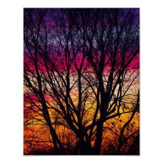Colorful Sunset with a silhouetted tree, Ohio ポスター