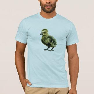 CONCHORDSのアヒルのワイシャツBRET FOTC飛行 Tシャツ