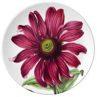 Coneflowerの紫色のプレート 磁器プレート