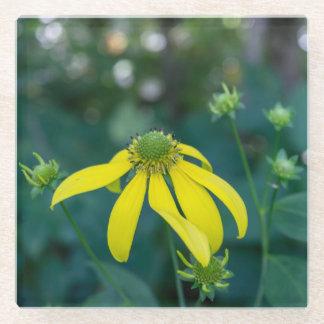 Coneflowerの黄色い野生の花ガラスのコースター ガラスコースター